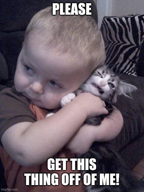 DON'T CHOKE HIM |  PLEASE; GET THIS THING OFF OF ME! | image tagged in cats,funny cats | made w/ Imgflip meme maker