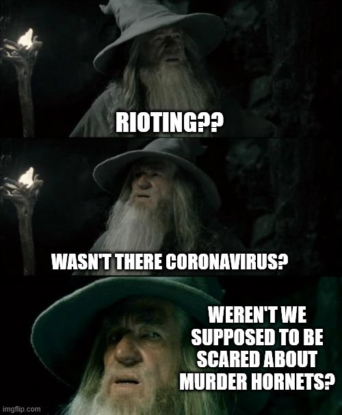 Confused Gandalf |  RIOTING?? WASN'T THERE CORONAVIRUS? WEREN'T WE SUPPOSED TO BE SCARED ABOUT MURDER HORNETS? | image tagged in memes,confused gandalf | made w/ Imgflip meme maker