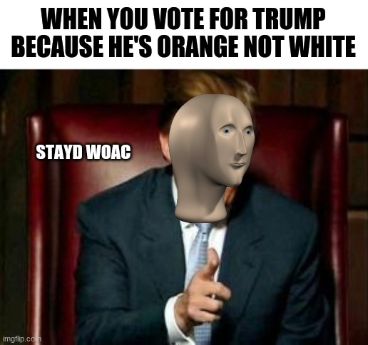 bruh |  WHEN YOU VOTE FOR TRUMP BECAUSE HE'S ORANGE NOT WHITE; STAYD WOAC | image tagged in donald trump | made w/ Imgflip meme maker