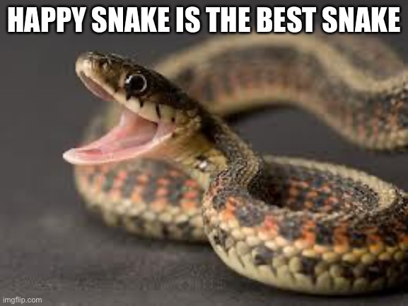 True |  HAPPY SNAKE IS THE BEST SNAKE | image tagged in warning snake | made w/ Imgflip meme maker