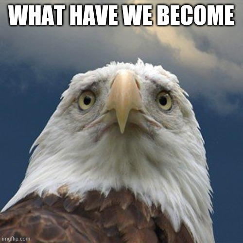 Whay have we become |  WHAT HAVE WE BECOME | image tagged in america please | made w/ Imgflip meme maker