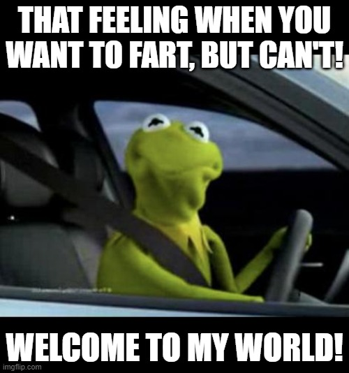 That Feeling When You Want to Fart, but Can't. |  THAT FEELING WHEN YOU WANT TO FART, BUT CAN'T! WELCOME TO MY WORLD! | image tagged in kermit driving | made w/ Imgflip meme maker