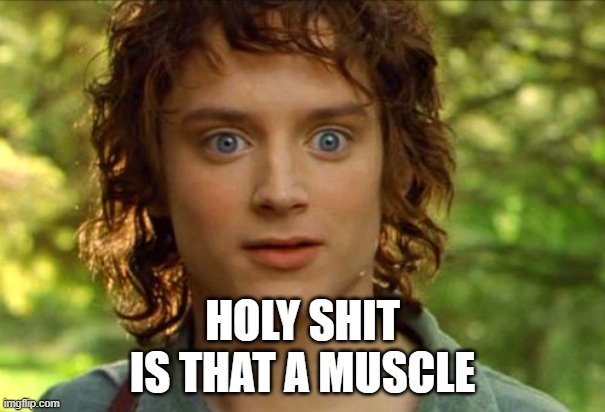Surpised Frodo |  HOLY SHIT IS THAT A MUSCLE | image tagged in memes,surpised frodo,funny memes | made w/ Imgflip meme maker