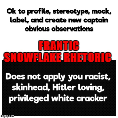 Heavy Snow Expected |  FRANTIC SNOWFLAKE RHETORIC | image tagged in passive aggressive racism,liberal logic | made w/ Imgflip meme maker