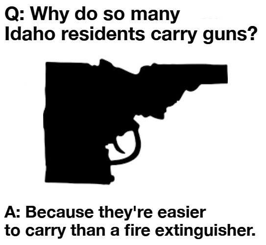 Why do so many Idaho residents carry guns? |  Q: Why do so many Idaho residents carry guns? A: Because they're easier to carry than a fire extinguisher. | image tagged in gun rights,self defense,2nd amendment,get off my lawn,death to tyrants,girls with guns | made w/ Imgflip meme maker
