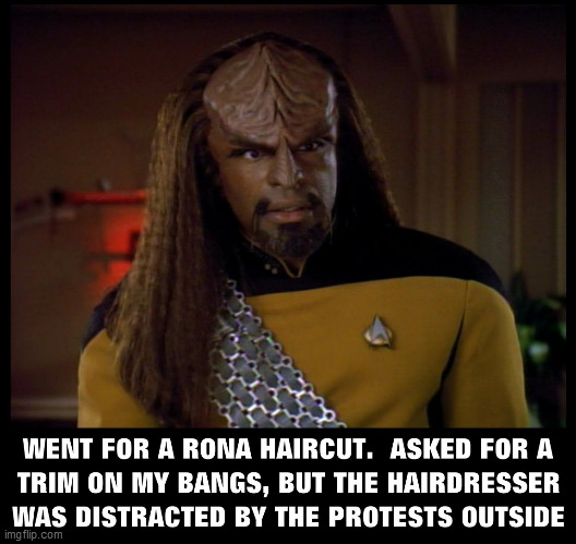Star Trim | image tagged in haircut,star trek the next generation,worf,coronavirus,protests,hairdresser | made w/ Imgflip meme maker