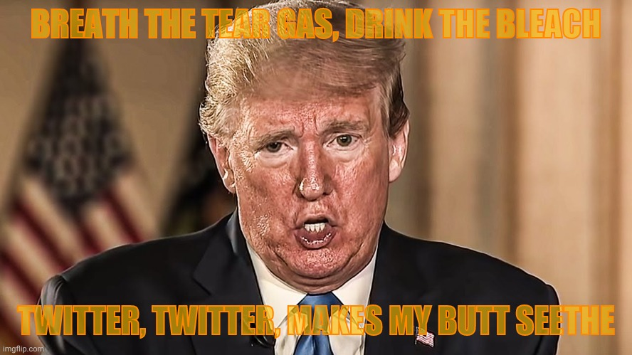 BREATH THE TEAR GAS, DRINK THE BLEACH TWITTER, TWITTER, MAKES MY BUTT SEETHE | made w/ Imgflip meme maker