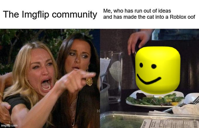 This is me every day |  The Imgflip community; Me, who has run out of ideas and has made the cat into a Roblox oof | image tagged in memes,woman yelling at cat | made w/ Imgflip meme maker