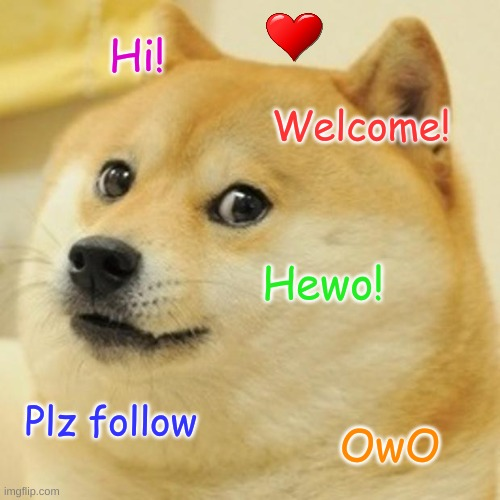 Introduction! |  Hi! Welcome! Hewo! Plz follow; OwO | image tagged in memes,doge | made w/ Imgflip meme maker