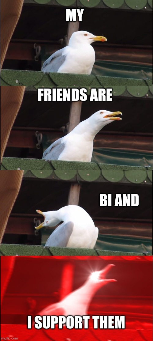 They are and i do |  MY; FRIENDS ARE; BI AND; I SUPPORT THEM | image tagged in memes,inhaling seagull | made w/ Imgflip meme maker