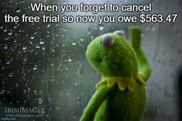Oh no..... |  When you forget to cancel the free trial so now you owe $563.47 | image tagged in kermit window,kermit,kermit the frog | made w/ Imgflip meme maker