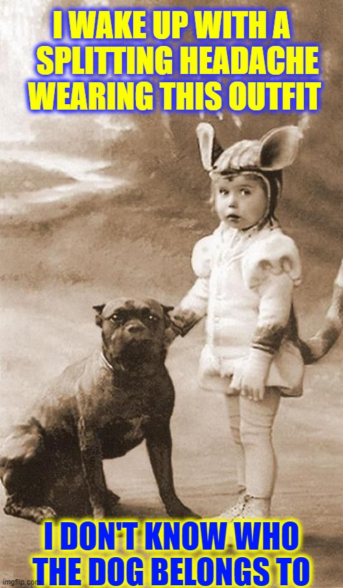 I don't know what time I got in, but... |  I WAKE UP WITH A   SPLITTING HEADACHE  WEARING THIS OUTFIT; I DON'T KNOW WHO THE DOG BELONGS TO | image tagged in vince vance,pit bull,memes,cute baby,headache,dogs | made w/ Imgflip meme maker