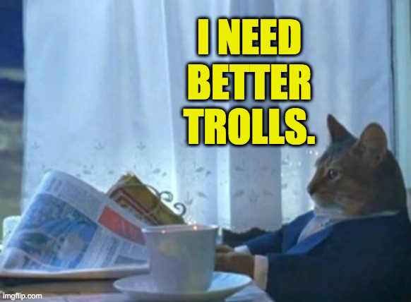 When your trolling is so bad that I have to coach you, it shames us both. |  I NEED BETTER TROLLS. | image tagged in memes,i should buy a boat cat,politics | made w/ Imgflip meme maker