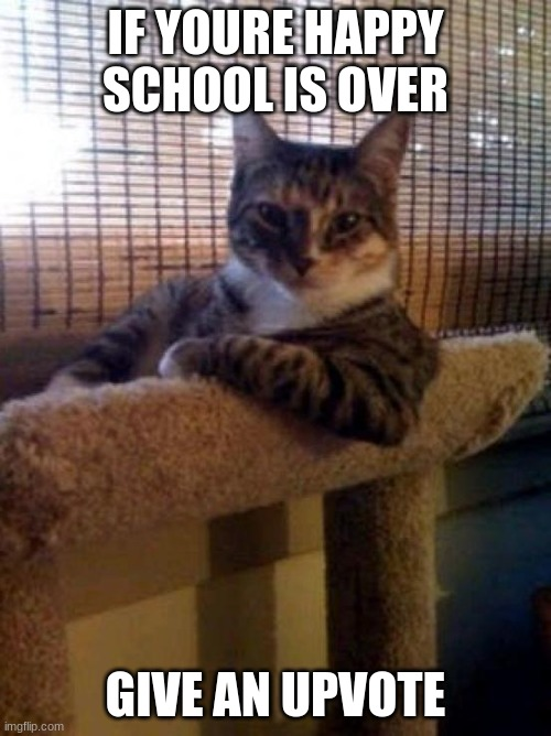 2020 School is OVER!!!!!!! |  IF YOURE HAPPY SCHOOL IS OVER; GIVE AN UPVOTE | image tagged in memes,the most interesting cat in the world | made w/ Imgflip meme maker