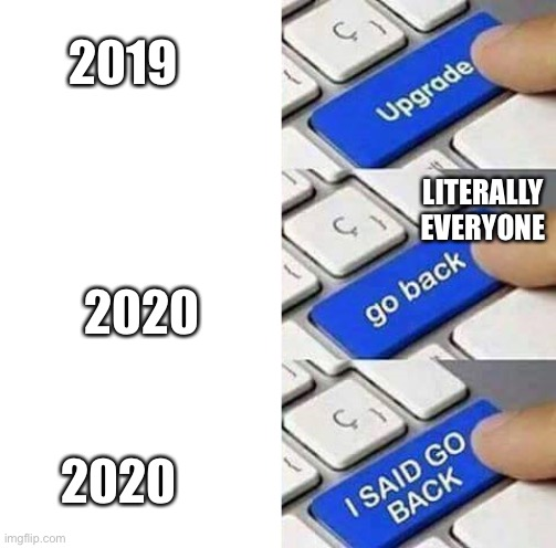 2020 sucks |  2019; LITERALLY EVERYONE; 2020; 2020 | image tagged in i said go back | made w/ Imgflip meme maker