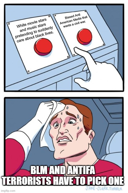 Terrorists have hard decisions too. |  Biased Anti American Media that wants a civil war. White movie stars and music stars pretending to suddenly care about black lives. BLM AND ANTIFA TERRORISTS HAVE TO PICK ONE | image tagged in memes,two buttons | made w/ Imgflip meme maker