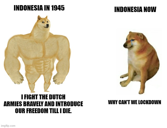 swole doge vs cheems (Indonesia's History vs Covid-19 spreads) |  INDONESIA NOW; INDONESIA IN 1945; I FIGHT THE DUTCH ARMIES BRAVELY AND INTRODUCE OUR FREEDOM TILL I DIE. WHY CAN'T WE LOCKDOWN | image tagged in swole doge vs cheems | made w/ Imgflip meme maker