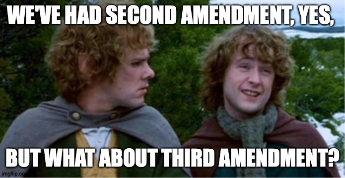 Merry and Pippin |  WE'VE HAD SECOND AMENDMENT, YES, BUT WHAT ABOUT THIRD AMENDMENT? | image tagged in merry and pippin,AdviceAnimals | made w/ Imgflip meme maker