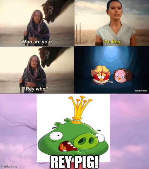 Finally Rey's true colors show... lol |  REY PIG! | image tagged in rey who,funny,star wars,angry birds,angry birds pig | made w/ Imgflip meme maker