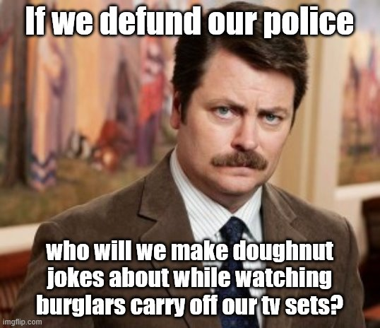If you want to defund our police, better be prepared to stop binging on Law & Order |  If we defund our police; who will we make doughnut jokes about while watching burglars carry off our tv sets? | image tagged in memes,ron swanson,stupid democrats,defund police,radical lawmakers,crime | made w/ Imgflip meme maker