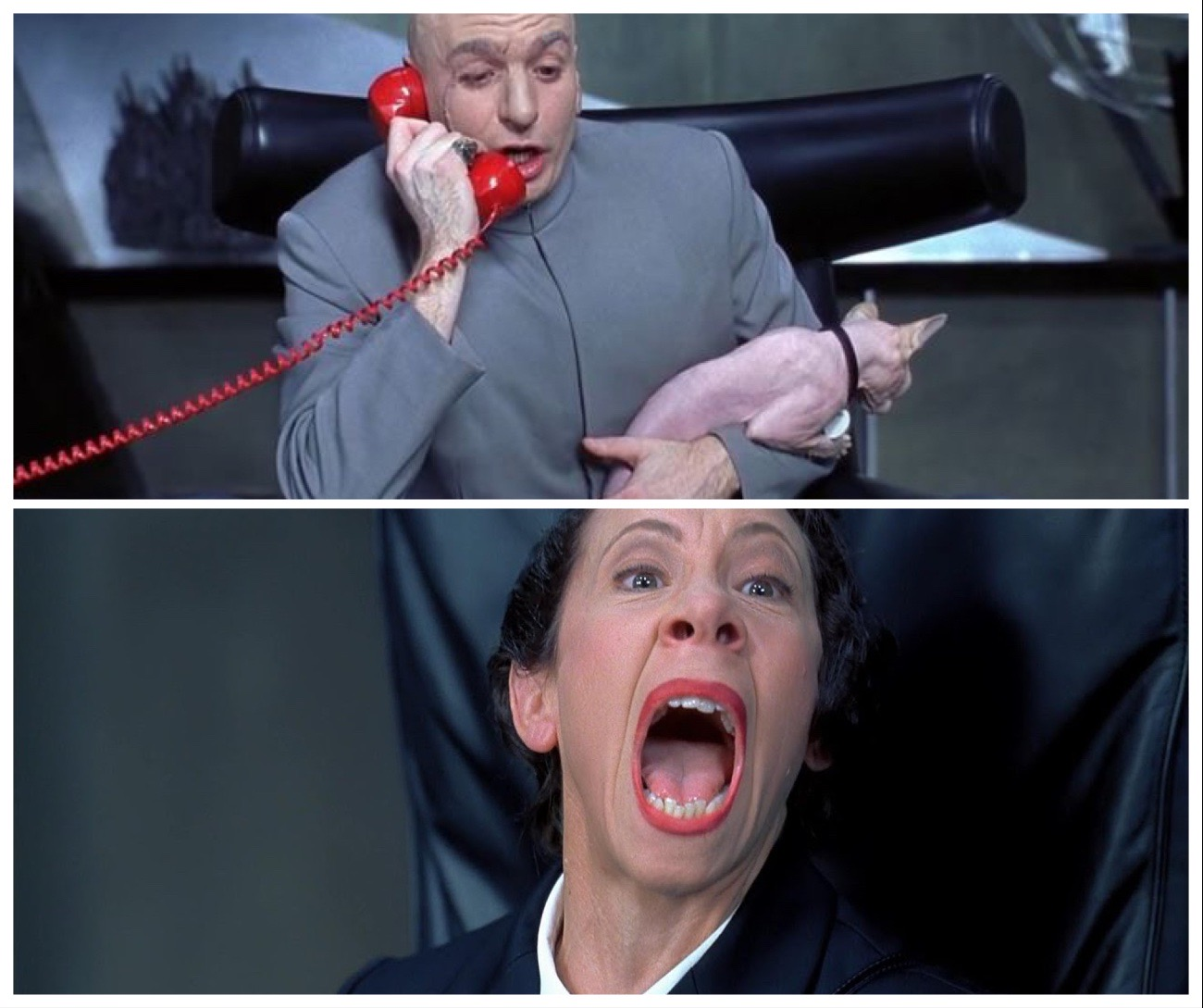 Dr. Evil, a fictional character in the Austin Powers series. He was the main antagonist and Austin Powers'snemesis