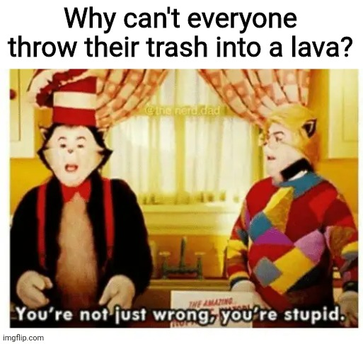 You're not just wrong your stupid |  Why can't everyone throw their trash into a lava? | image tagged in you're not just wrong your stupid,lava,trash,memes | made w/ Imgflip meme maker