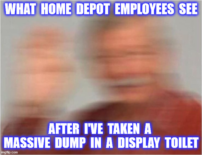 WHAT  HOME  DEPOT  EMPLOYEES  SEE AFTER  I'VE  TAKEN  A  MASSIVE  DUMP  IN  A  DISPLAY  TOILET | made w/ Imgflip meme maker