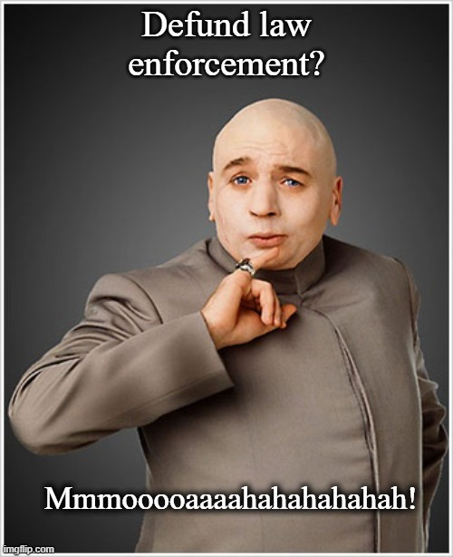 Ummmm Yah. |  Defund law enforcement? Mmmooooaaaahahahahahah! | image tagged in memes,dr evil,law | made w/ Imgflip meme maker