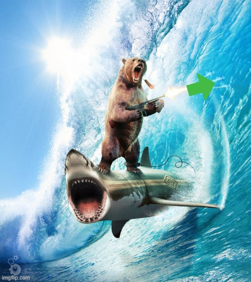 image tagged in bear riding shark | made w/ Imgflip meme maker