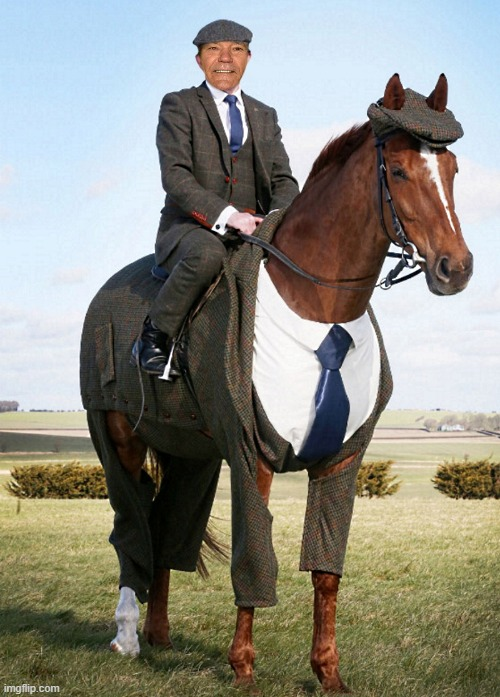 me and a handsome horse | image tagged in horse,kewlew | made w/ Imgflip meme maker
