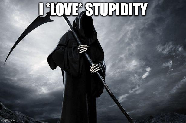 Death | I *LOVE* STUPIDITY | image tagged in death | made w/ Imgflip meme maker