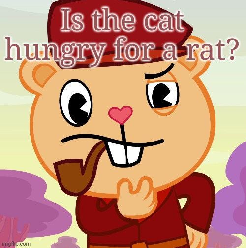 Is the cat hungry for a rat? | image tagged in pop htf | made w/ Imgflip meme maker
