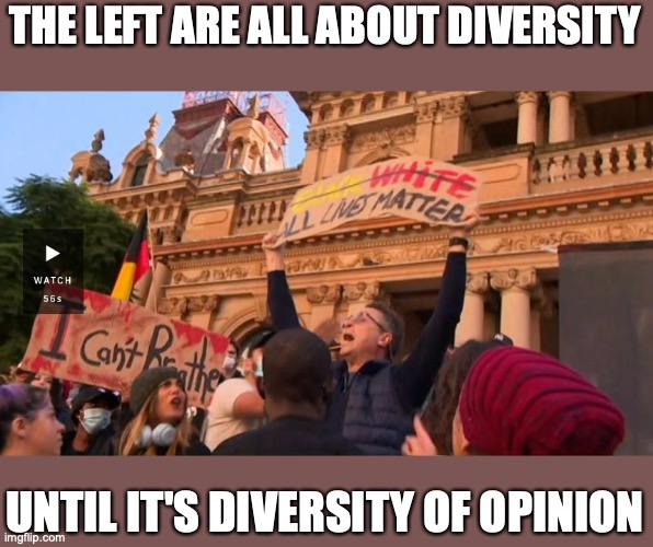 Diversity of Opinion |  THE LEFT ARE ALL ABOUT DIVERSITY; UNTIL IT'S DIVERSITY OF OPINION | image tagged in diversity,free speech,liberal hypocrisy,protest,shut up | made w/ Imgflip meme maker