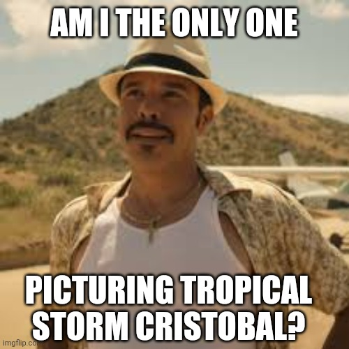 Cristobal from HBO's Barry |  AM I THE ONLY ONE; PICTURING TROPICAL STORM CRISTOBAL? | image tagged in tropical storm,cristobal,barry,noho hank | made w/ Imgflip meme maker