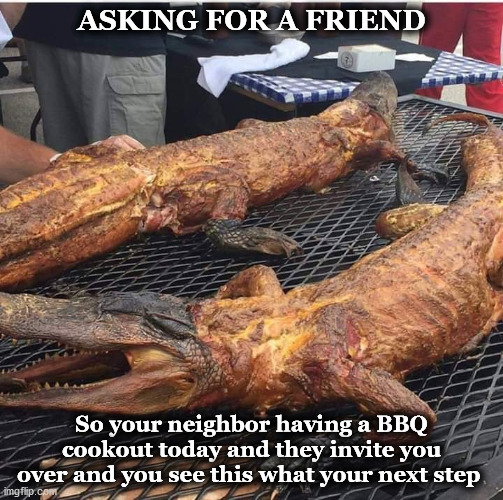 gator |  ASKING FOR A FRIEND; So your neighbor having a BBQ cookout today and they invite you over and you see this what your next step | image tagged in gator | made w/ Imgflip meme maker
