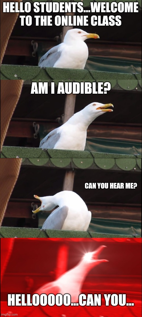 Inhaling Seagull Meme |  HELLO STUDENTS...WELCOME TO THE ONLINE CLASS; AM I AUDIBLE? CAN YOU HEAR ME? HELLOOOOO...CAN YOU... | image tagged in memes,inhaling seagull | made w/ Imgflip meme maker