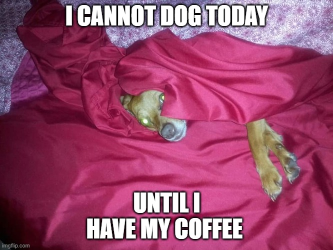 Java Pooch |  I CANNOT DOG TODAY; UNTIL I HAVE MY COFFEE | image tagged in coffee,coffee addict,giant coffee,old man cup of coffee,spongebob coffee,minion | made w/ Imgflip meme maker
