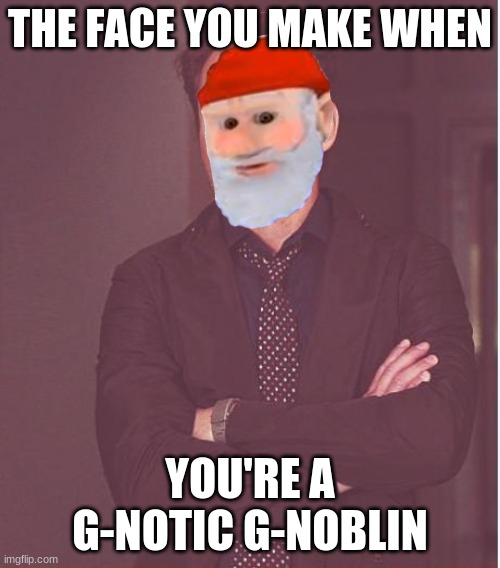 Im a G-notic G-noblin |  THE FACE YOU MAKE WHEN; YOU'RE A G-NOTIC G-NOBLIN | image tagged in memes,face you make robert downey jr,gnome | made w/ Imgflip meme maker