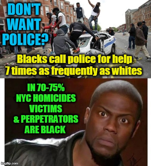 Inconvenient Truths |  DON'T   WANT  POLICE? Blacks call police for help 7 times as frequently as whites; IN 70-75% NYC HOMICIDES VICTIMS & PERPETRATORS ARE BLACK | image tagged in politics,political meme,democrats,crime,police,liberalism | made w/ Imgflip meme maker