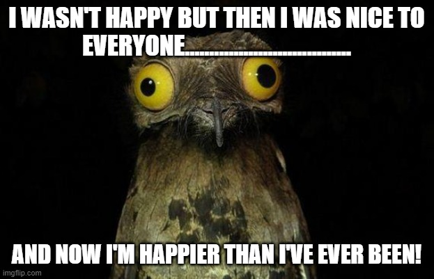Happy Bird |  I WASN'T HAPPY BUT THEN I WAS NICE TO EVERYONE.................................. AND NOW I'M HAPPIER THAN I'VE EVER BEEN! | image tagged in memes,weird stuff i do potoo,kindness,happiness | made w/ Imgflip meme maker