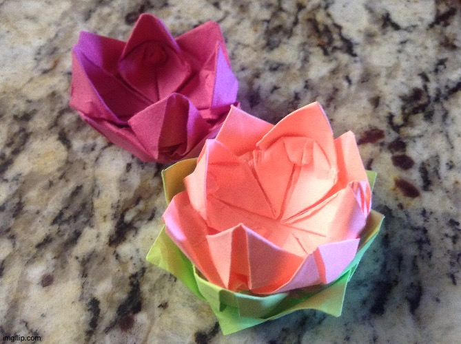 Lotus flower origami | image tagged in origami,flower | made w/ Imgflip meme maker