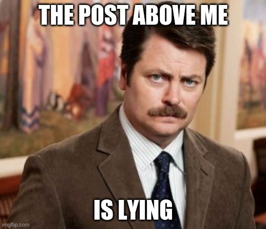 Ron Swanson Meme | THE POST ABOVE ME IS LYING | image tagged in memes,ron swanson | made w/ Imgflip meme maker
