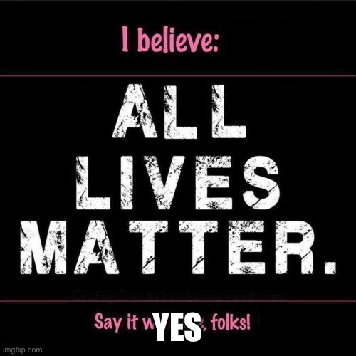 All LIVES MATTER |  YES | image tagged in all lives matter | made w/ Imgflip meme maker