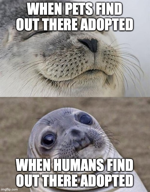 Short Satisfaction VS Truth |  WHEN PETS FIND OUT THERE ADOPTED; WHEN HUMANS FIND OUT THERE ADOPTED | image tagged in memes,short satisfaction vs truth | made w/ Imgflip meme maker