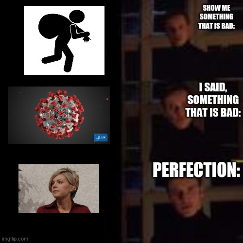 Karen is bad |  SHOW ME SOMETHING THAT IS BAD:; I SAID, SOMETHING THAT IS BAD:; PERFECTION: | image tagged in karen,is,bad,coronavirus,thief,perfection | made w/ Imgflip meme maker