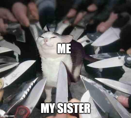 Sibling rivalry is fun |  ME; MY SISTER | image tagged in knife cat | made w/ Imgflip meme maker