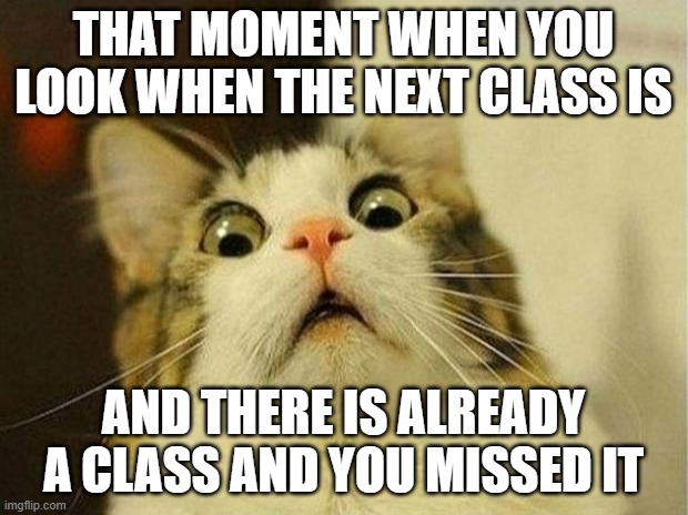 happend too many times to me |  THAT MOMENT WHEN YOU LOOK WHEN THE NEXT CLASS IS; AND THERE IS ALREADY A CLASS AND YOU MISSED IT | image tagged in memes,scared cat,online school | made w/ Imgflip meme maker