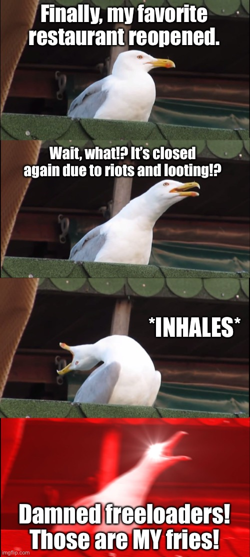 Looters are stealing from seagulls |  Finally, my favorite restaurant reopened. Wait, what!? It's closed again due to riots and looting!? *INHALES*; Damned freeloaders! Those are MY fries! | image tagged in memes,inhaling seagull,looting,protest,2020,angry birds | made w/ Imgflip meme maker
