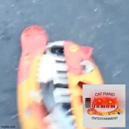 Cat piano entertainment reacts cat piano destruction | image tagged in cat,piano,destruction,reactions | made w/ Imgflip meme maker