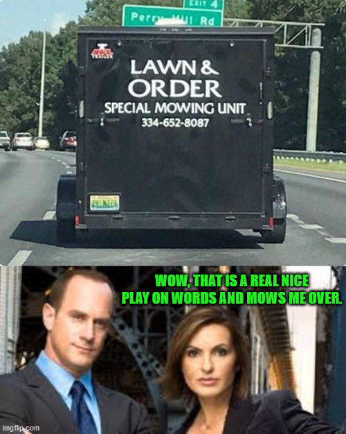 Well played sir, well played. |  WOW, THAT IS A REAL NICE PLAY ON WORDS AND MOWS ME OVER. | image tagged in we need law and order,play on words,pun | made w/ Imgflip meme maker